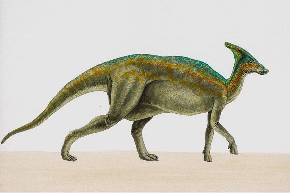 Динозавры, картинка 47.