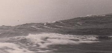 Познакомилась с моряком и отдалась прямо на берегу