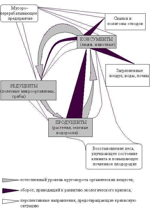 Концепции экологического